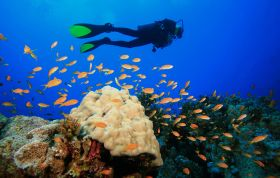 kefalonia-scuba-diving-